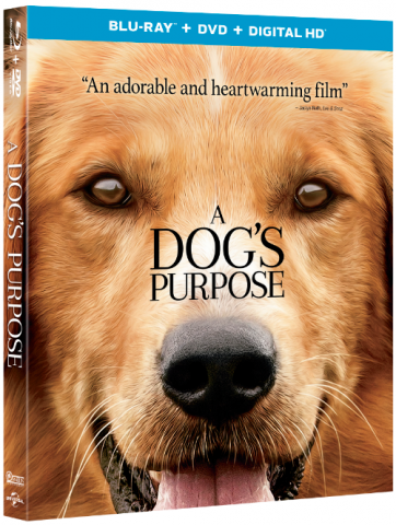 A Dog's Purpose Blu-ray, DVD, Digital HD Combo Pack