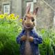Peter Rabbit Sony Studios