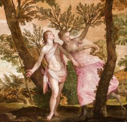 Veronese, Apollo and Daphne, ca. 1560-1565. Oil on canvas. Gift of Anne R. and Amy Putnam, 1945.27
