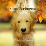 A-Dogs-Purpose-Movie-wallpaper-HD-film-2017-poster-image
